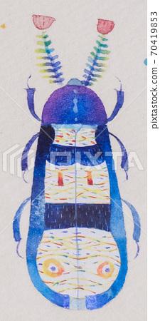 花哨的小虫 70419853