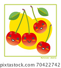 Information on harvesting with cherry fruits 70422742
