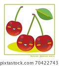 Information on harvesting with Nachuraru's American cherry fruit 70422743