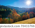 autumnal rural landscape in mountains. grass on the hill, trees in colorful foliage. beautiful nature scenery. sunny morning weather with fluffy clouds on the sky 70433766