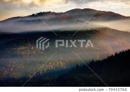 rolling hills in fog at sunrise. beautiful mountain landscape in autumn season. clouds on the morning sky. dramatic nature scenery 70433768