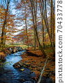 mountain water stream in the beech forest. beautiful nature scenery in autumn on a sunny day 70433778