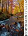 mountain stream in autumn forest. water flow among the rocks. trees in colorful foliage. sunny weather in the morning. beautiful nature scenery 70433782