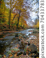 mountain river in beech forest. beautiful autumnal scenery of carpathian woodland. trees in fall colors. boulders in the stream. nature freshness concept 70433783