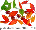 秋天的味道 70438718