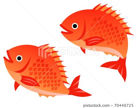 彈跳鯛魚的插圖 70448725