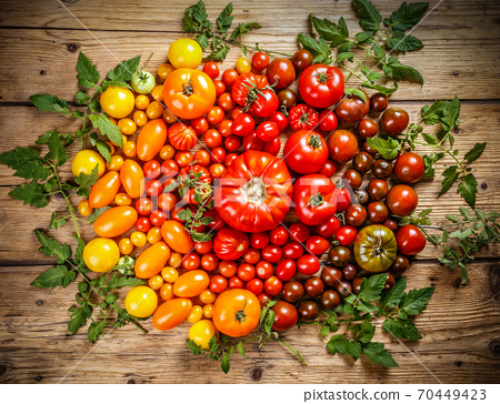 Flat-lay of fresh colorful ripe tomatoes 70449423