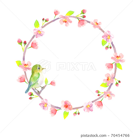 Round frame of cherry blossoms and warblers drawn in watercolor 70454766