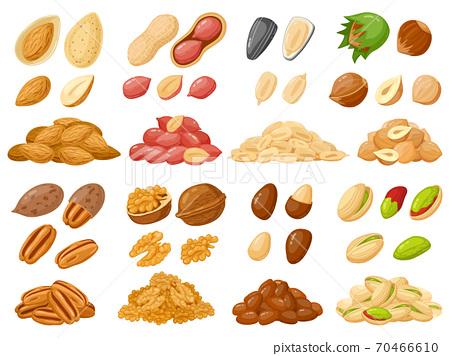 Cartoon nuts. Almond, peanut, cashew, hazelnut nuts, sunflower seed and pistachio, nut food isolated vector illustration icons set 70466610