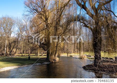 autumn view in The English Garden, Munich, Germany. 70468135