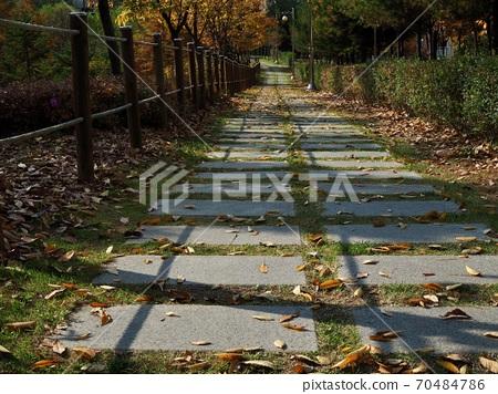 한국의 가을 공원 숲길  70484786