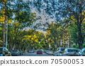 Residential neighborhood in Los Angeles 70500053