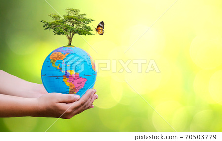 Concept Save the world save environment The world is in the grass of the green bokeh background 70503779