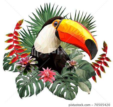 Polygonal Illustration Toucan bird. 70505420