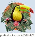 Polygonal Illustration Toucan bird. 70505421