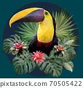 Polygonal Illustration Toucan bird. 70505422
