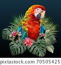 Polygonal Illustration Macaw bird. 70505425