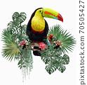 Polygonal Illustration Toucan bird. 70505427