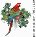 Polygonal Illustration green winged macaw. 70505429