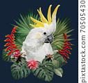Polygonal Illustration  Cockatoo bird. 70505430