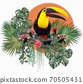 Polygonal Illustration Toucan bird. 70505431