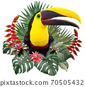 Polygonal Illustration Toucan bird. 70505432