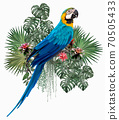 Polygonal Illustration Blue & gold macaw. 70505433