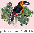 Polygonal Illustration Toucan bird. 70505434