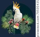 Polygonal Illustration  Cockatoo bird. 70505435