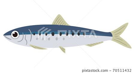 魷魚的插圖 70511432