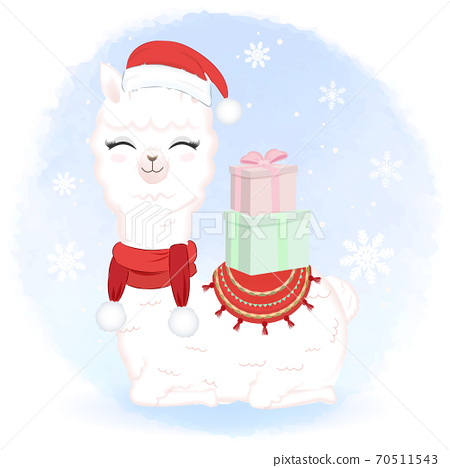 Cute Llama with gift box in winter and Christmas illustration. 70511543