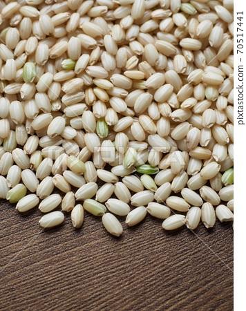 한국의 유기농 곡식 현미  70517441