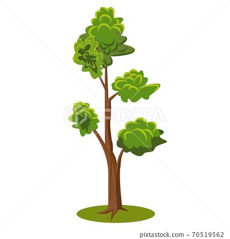 Flat cartoon vector tree. Flat Vector Illustration for nature props 70519562