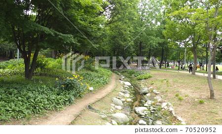 서울숲 70520952