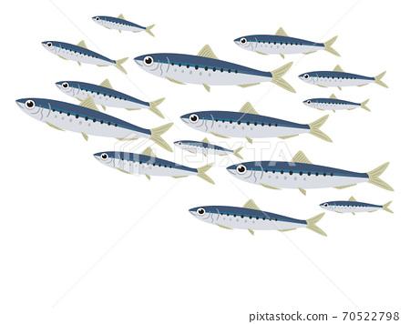 魚沙丁魚學校 70522798