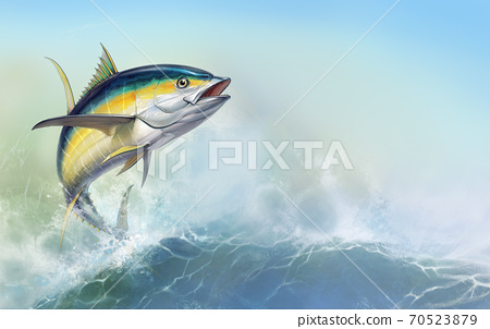 Yellow tuna. black fin yellow tuna on white. Big fish on the background of large waves. Realistic isolated illustration. 70523879