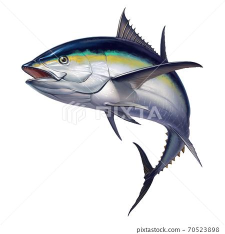 black fin tuna. Realistic isolated illustration. 70523898