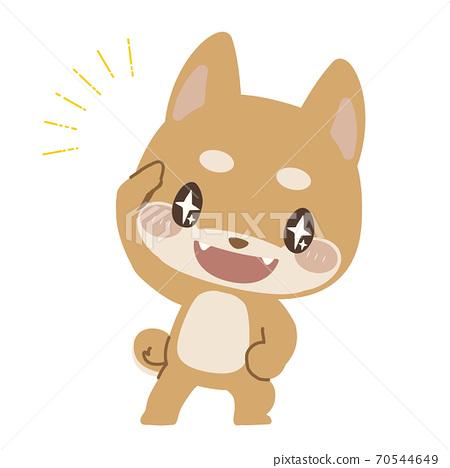 Shiba Inu peeking with his eyes shining 70544649