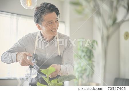 一個男人給觀葉植物澆水 70547406