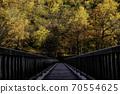 通往層雲峽秋葉的橋樑 70554625