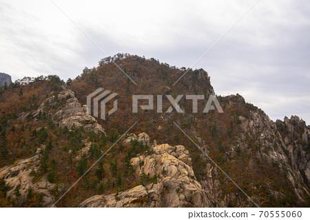 설악산,속초시,강원도 70555060