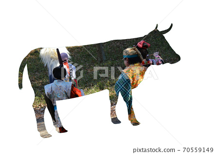 New Year's card of cow 70559149