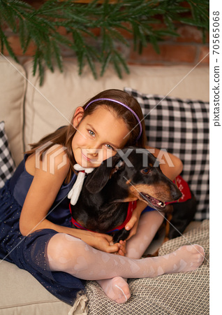 Happy childhood, Christmas magic fairy tale. A little girl is laughing with her friend, a dachshund dog, near the Christmas tree 70565068