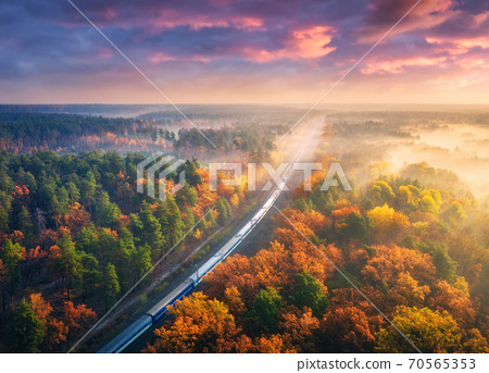 Aerial view of freight train in forest in fog at sunset in autumn 70565353