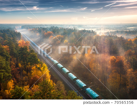 Aerial view of freight train in forest in fog at sunrise in autumn 70565356