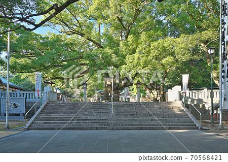 [대마 히코 신사】 도쿠시마 현 나루토시 大麻町板東 넓이 개 70568421