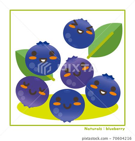 Nachuraru的藍莓果實收穫信息 70604216