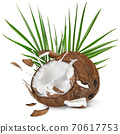 close-up of a coconuts with milk splash. 70617753