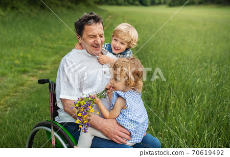 Small children with senior grandfather in wheelchair on a walk on meadow in nature. 70619492