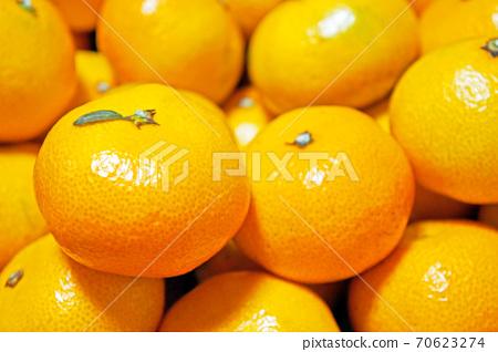 Mandarin honey 70623274